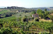 cultive-l-italie-toscane-9691538
